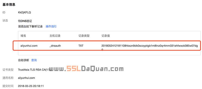 手动添加一条TXT类型的DNS记录